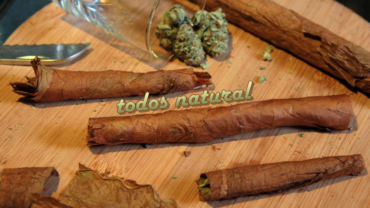 Todos Natural (Blunt Rolling with a Habana Montecristo Hand-Rolled Cuban Cigar)
